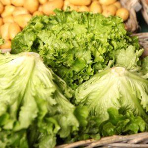 salade-batavia