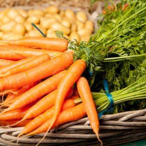 carotte-fane-ou-botte