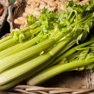 celeri-branche-feuille
