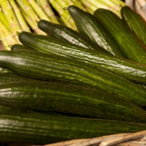 concombre-grand