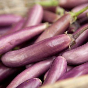 aubergine-perline