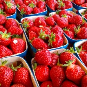 fraise-clery