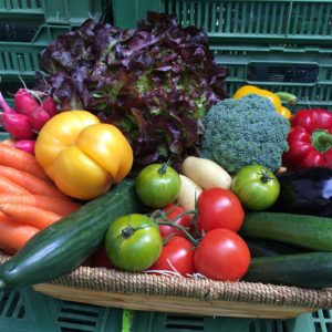 Panier de légumes frais